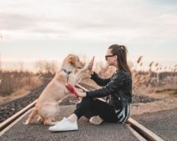 40 frases fofíssimas para legendar foto com cachorro