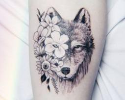 Tatuagem de lobo: as melhores ilustrações para você escolher!